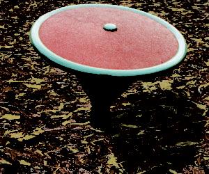 Venus Spinner - 700mm diameter