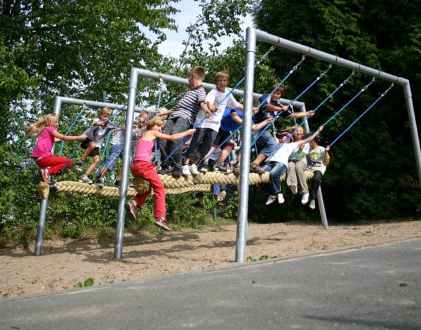 Cyclops Snake Swing - Double 5-9 seater